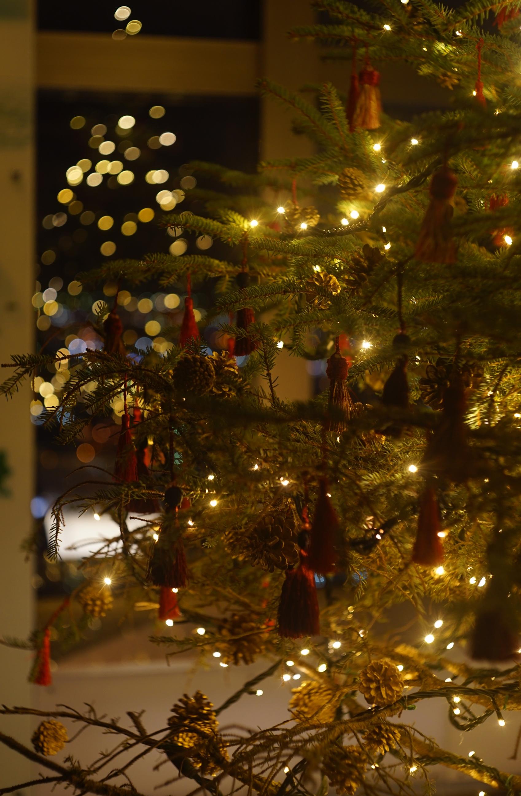 クリスマスツリー@JRタワー展望室T38(タワー・スリーエイト)