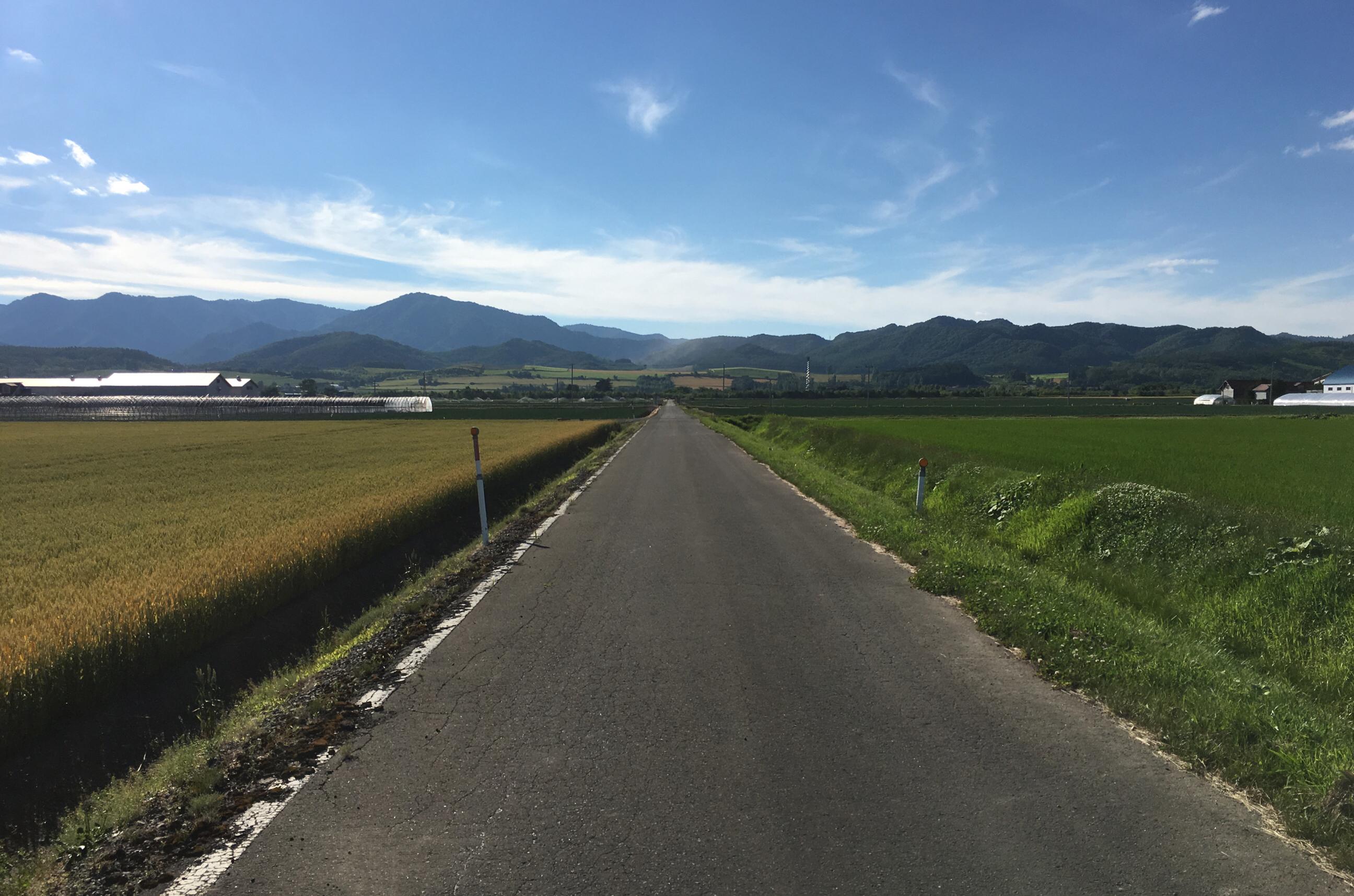 富良野の道路