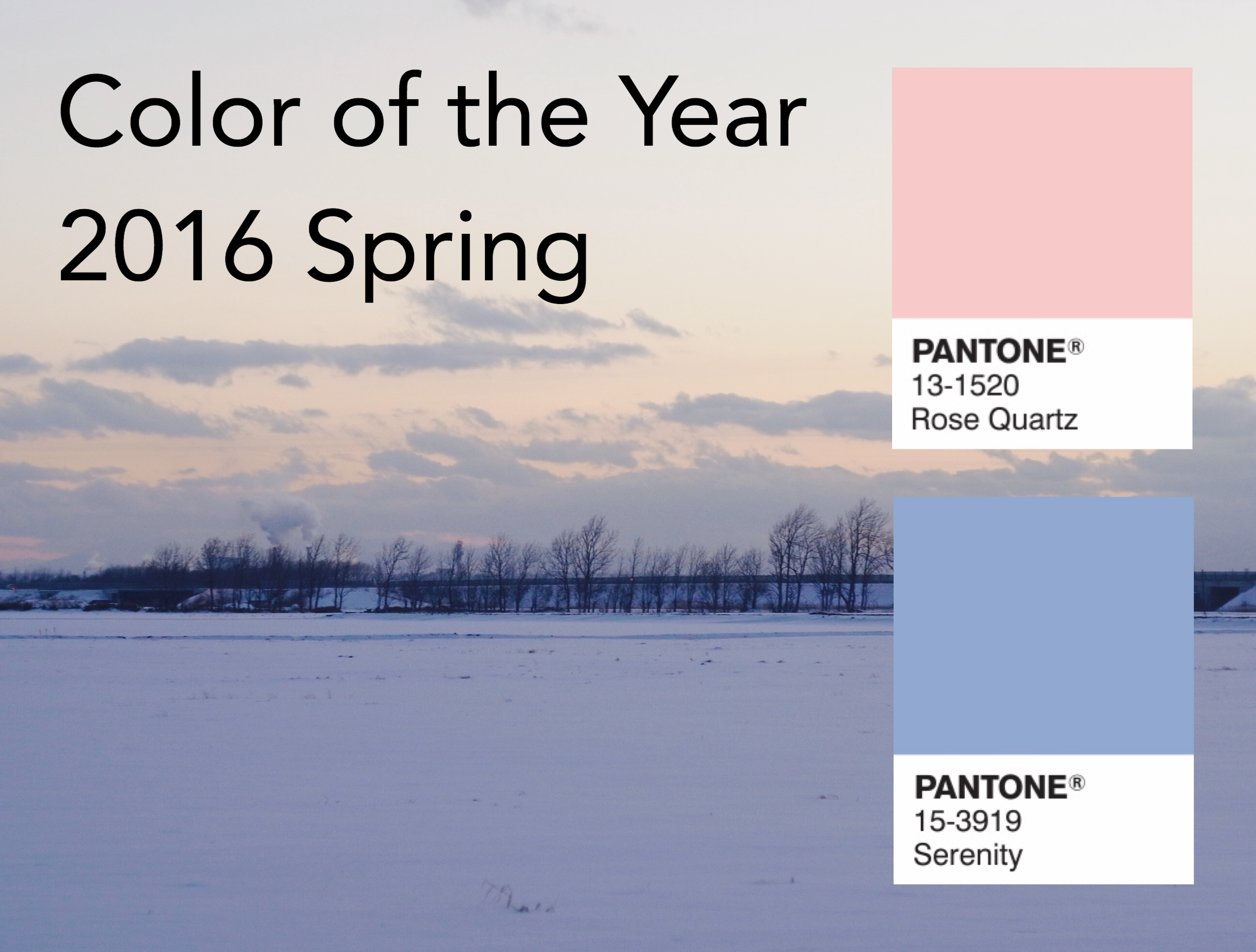Pantone Color of the Year 2016 Spring , Rose Quartz & Serenity
